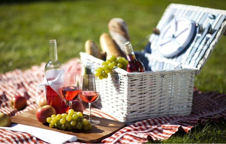 Идеальное вино для пикника – как выбрать?